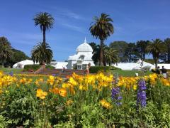 [Photo : Conservatory Of Flower dans le Golden Gate Park]