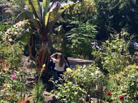 [Photo : Jardin luxuriant sur Russian Hill San Francisco]