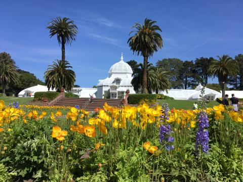 [Photo : Conservatory Of Flower dans le Golden Gate Park]