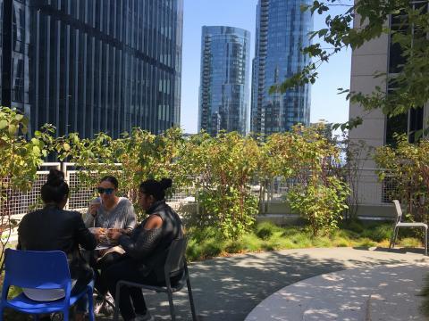 [Photo : Jardin dans le récent quartier de SOMA au milieu des gratte-ciel San Francisco]