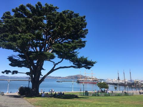 [Photo : Fisherman's Wharf à San Francisco]