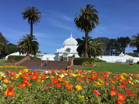 [Photo : Academy of Flowers dans le Golden Gate Park San Francisco]