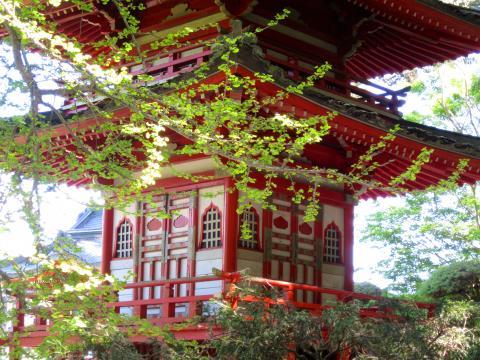 [Photo : Pagode au printemps Japanese Tea Garden]