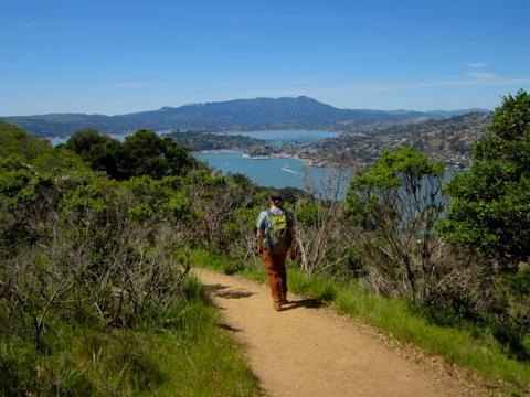 [Photo : chemin de randonnée sur Angel Island]