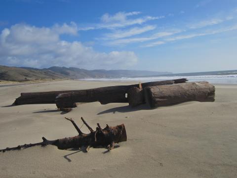 [Photo : immense plage à Point Reyes]